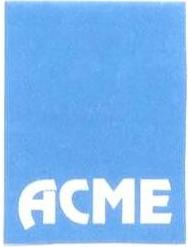 Acme Enterprises (A unit of AEMPL)